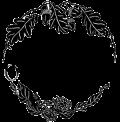 300px logo png